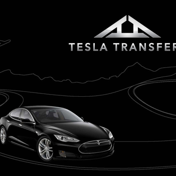 teslatransfers-preview